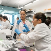 Engineering Research Center Will Help Expand Use of Therapies Based on Living Cells