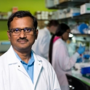 Biophysics Plays Key Role in Immune System Signaling, Response