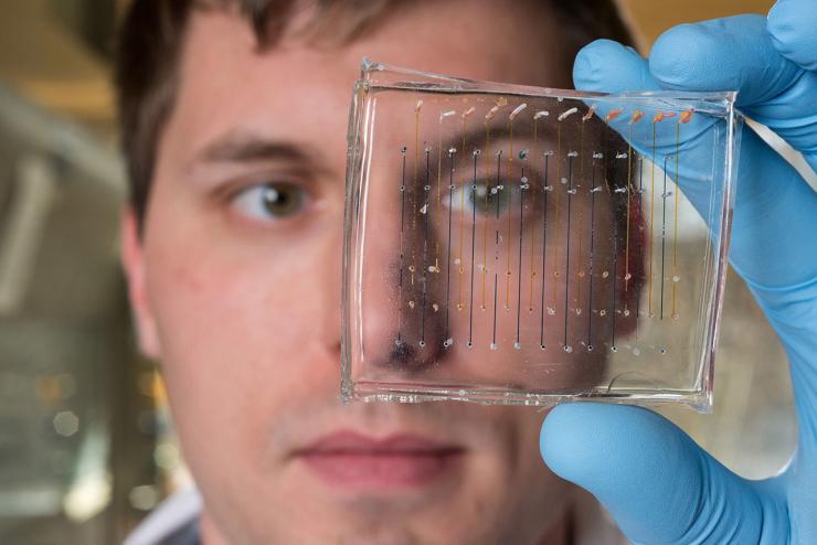 Testing Boosts Gene Therapies