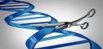 Dahlman on the CRISPR Cutting Edge